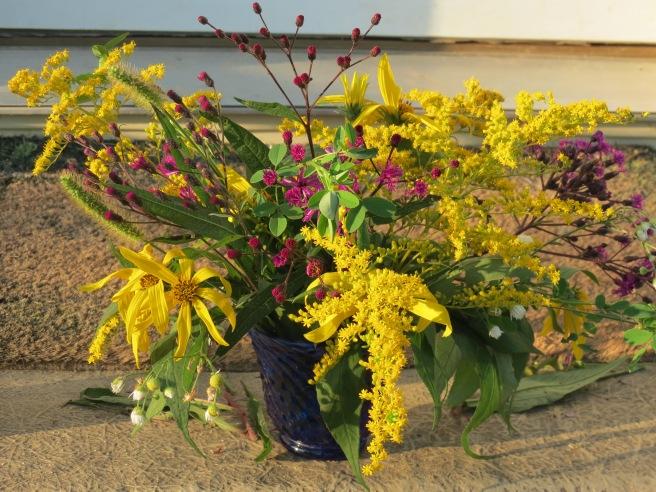 Sweet Golden Rod, Iron Weed, Common Fleabane, Woodland Sunflowers